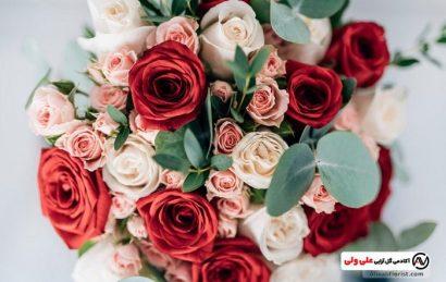 گل رز در گل آرایی