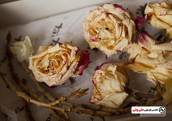 گل های طبیعی خشک