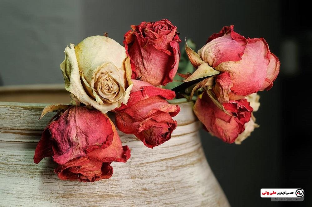 آموزش خشک کردن گل های طبیعی