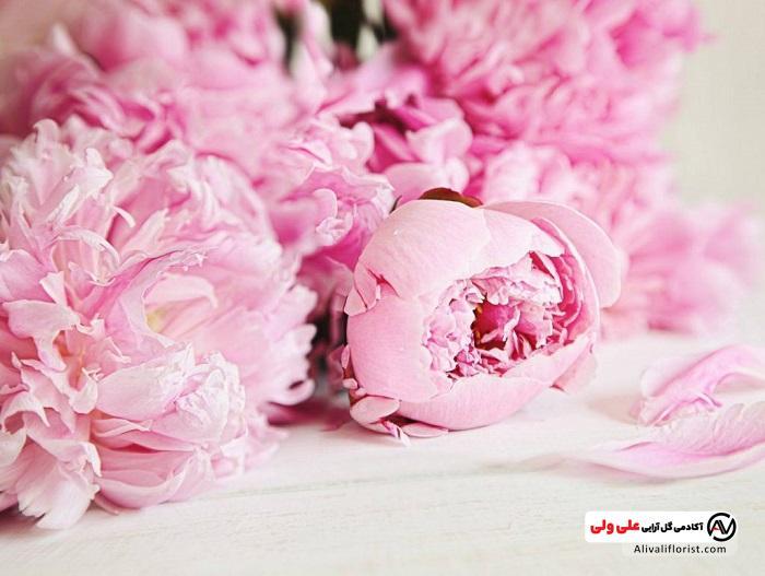 گلهای صورتی