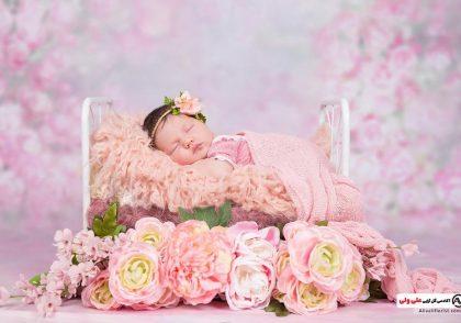 باکس گل برای تولد نوزاد