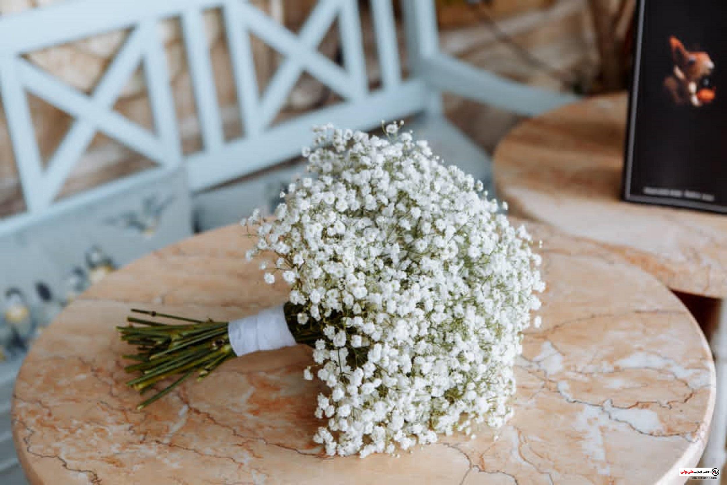 دسته گل عروس یا ژیپسوفسلا